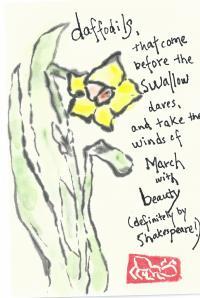 Daffodil.Shakespeare.3.abbie.2013-03-09
