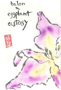 EggplantDayLilly.Talon_EggplantEcstasy.2013-03-16