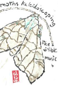 Moth_Swamplandia_03-25-13