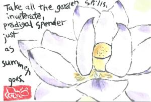 Lotus.TakeAlltheGardenSpills.07-20-13