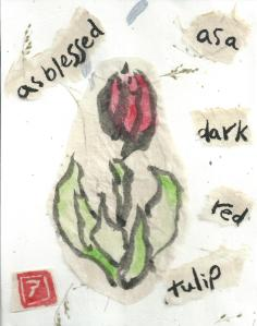 Tulip.Blessed.Red2.Collage.07-13-13