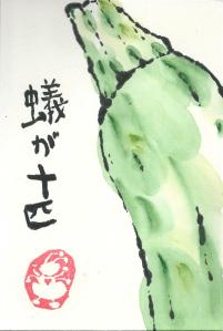 zucchini.arigajupiki.1.09-01-13